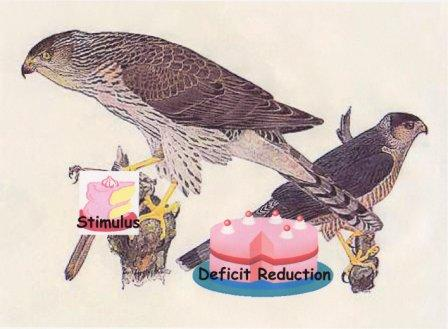 hawks-eating-cake-webformat