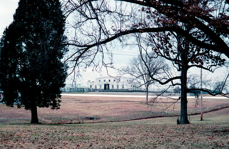fort-knox-behind-trees